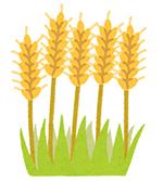 ザ・プラセンタクイーンの口コミと効果【植物プラセンタの特長】