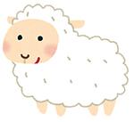 ザ・プラセンタクイーンの口コミと効果【羊プラセンタの特長】